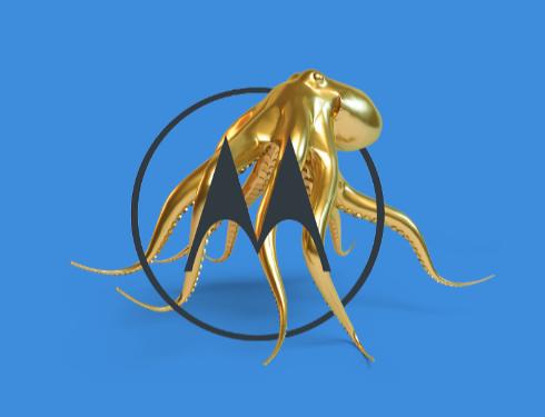 moto octopus